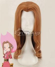 Digimon Adventure Digimon Monster Mimi Tachikawa Brown Cosplay Wig