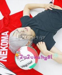 Haikyu!! Haikyuu!! Second Season Nekoma High Nekoma Koukou Lev Haiba Silver Cosplay Wig