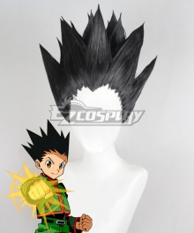 Hunter×Hunter Gon Freecss Black Cosplay Wig