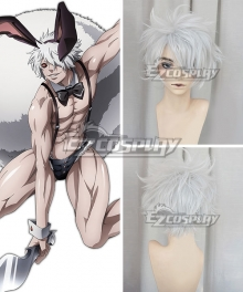 Juuni Taisen Zodiac War Rabbit Usagi Silver White Cosplay Wig