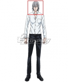 Noblesse M-21 Silver Grey Cosplay Wig