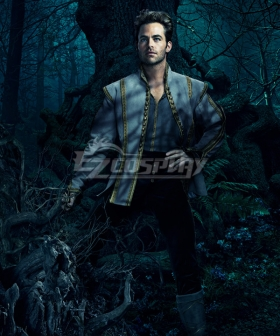 Into the Woods The Prince Cosplay Costume