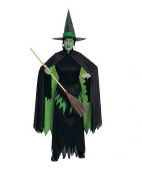 The Wizard of Oz Wicked Witch Adult Costume EWO0005