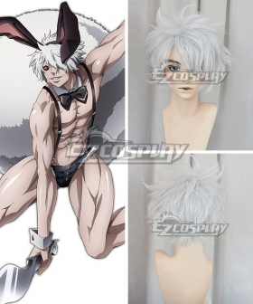 Juuni Taisen Zodiac War Rabbit Usagi Silver White Cosplay Wig