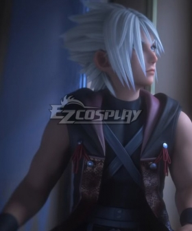 Kingdom Hearts III Young Xehanort Silver Cosplay Wig