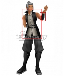 Kingdom Hearts Young Xehanort Cosplay Costume-Only Jacket And Armbands