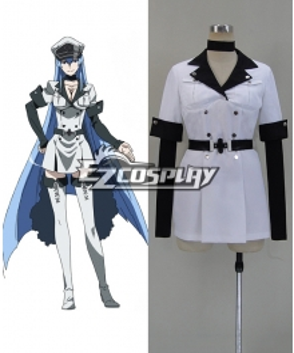 Akame Ga Kill! Jaegers Esdese Cosplay Costume