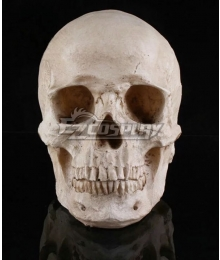 Halloween Skull Cosplay Accessory Prop