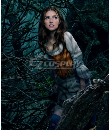 Into the Woods Cinderella Cosplay Costume