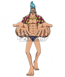 One Piece Franky Cosplay Costume