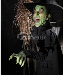 Wizard of Oz The Wicked witch of the West Cosplay Costume