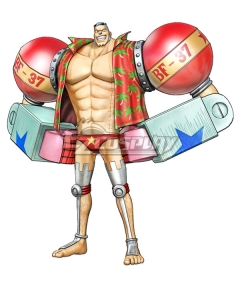 One Piece Franky 2 Years Cosplay Costume