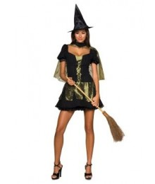 Wizard of Oz Sexy Wicked Witch of the West Adult Costume