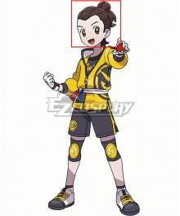 Pokemon Sword and Shield Victor DLC Brown Cosplay Wig