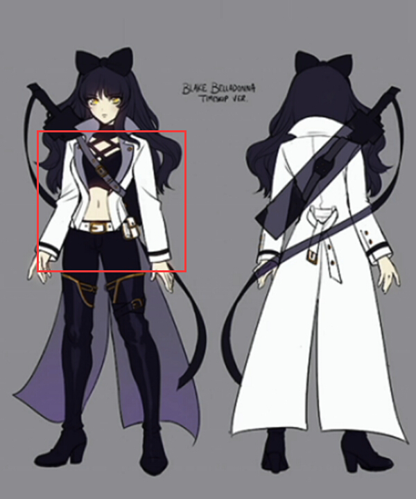 RWBY Volume 4 Blake Belladonna Cosplay Costume - Only the Coat