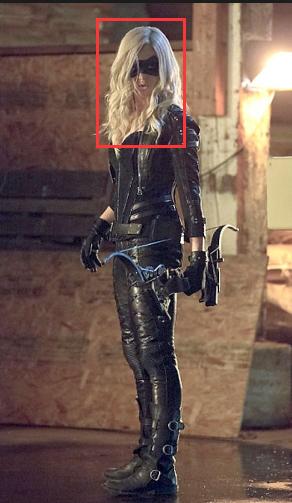 DC Comics Green Arrow Black Canary Arrow Sarah Cosplay Wig